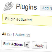 WordPress Plugin Activated