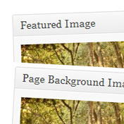 Change WordPress Featured Image Title